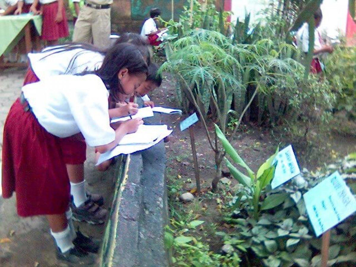 Rentetan Manfaat Taman Di Lingkungan Sekolah Siedoo